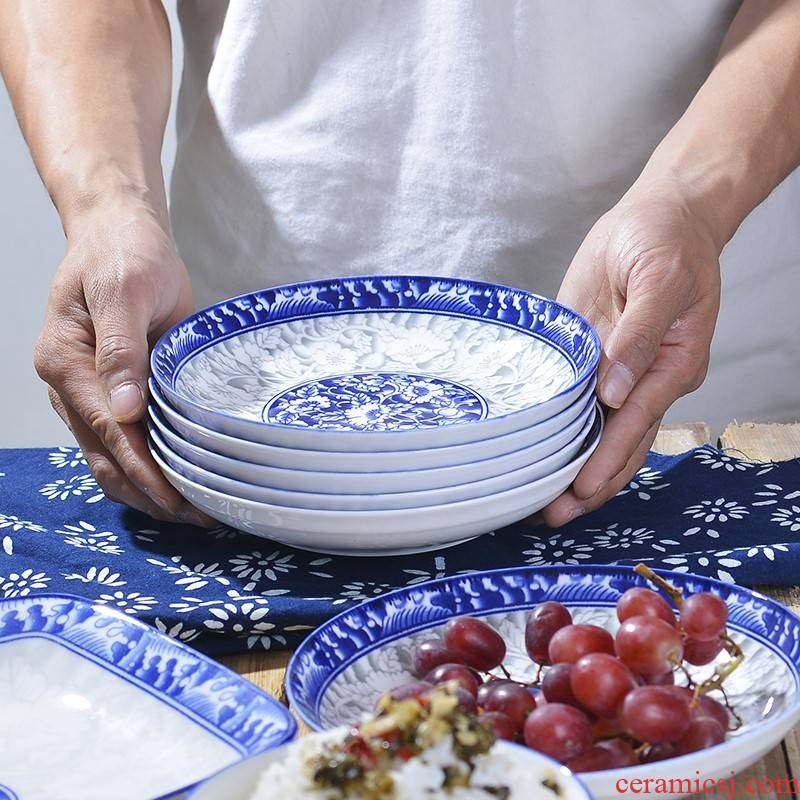 Butterfly disc son home household food dish dish dish dish of blue and white porcelain of jingdezhen web celebrity ceramic tableware suit Chinese style