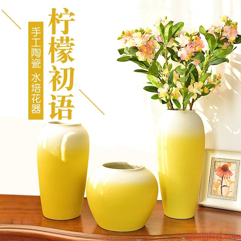 The new Angle of what Chinese style is I furnishing articles of jingdezhen ceramic vase in The sitting room porch TV ark, decoration home decoration