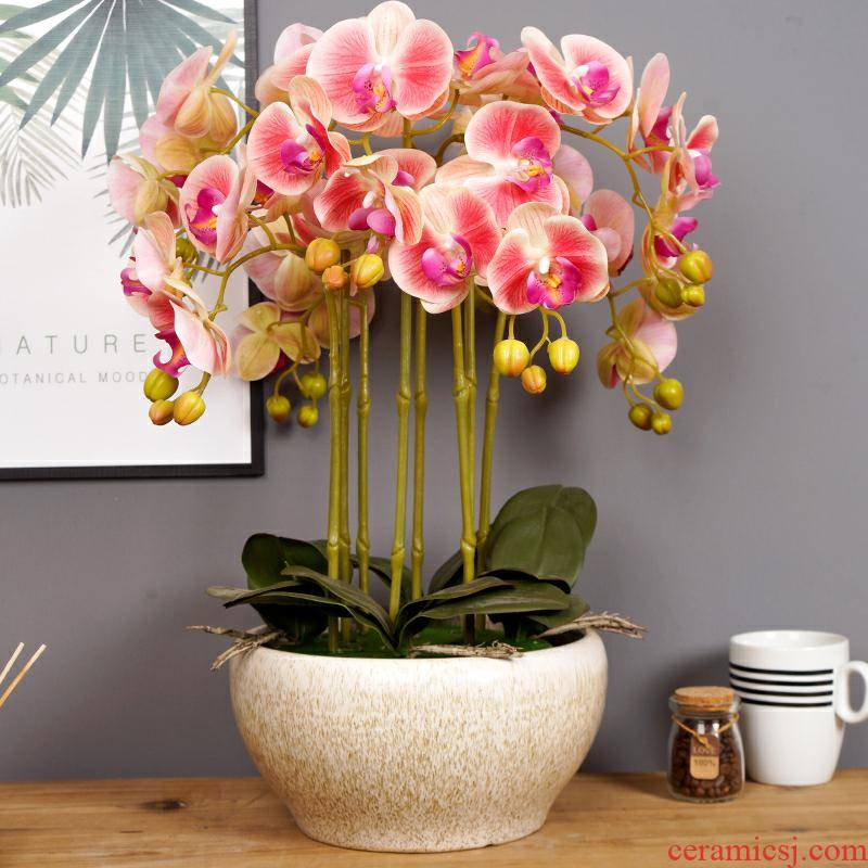 Nordic contracted white ceramic flower pot planting a butterfly orchid other clivia place flowers the opened during the Spring Festival