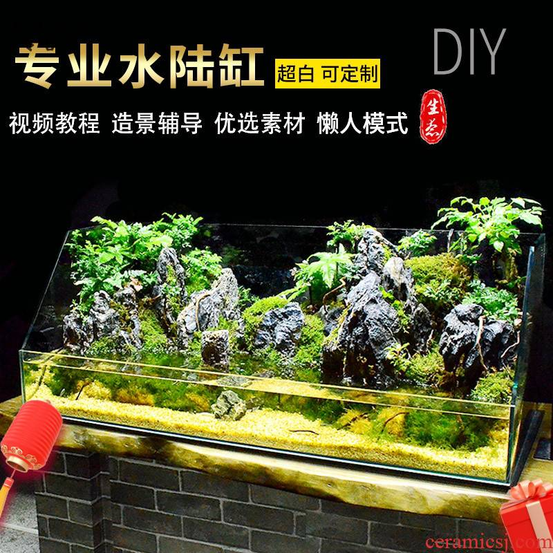 The amphibious tank rainforest landscape The plants furnishing articles amphibious ecological super white skeleton material package base cylinder accessories customized