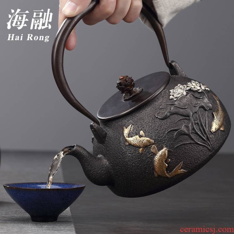 For cast iron pot of tea kettle manually electricity TaoLu home cooked this teapot tea stove suit kung fu tea set