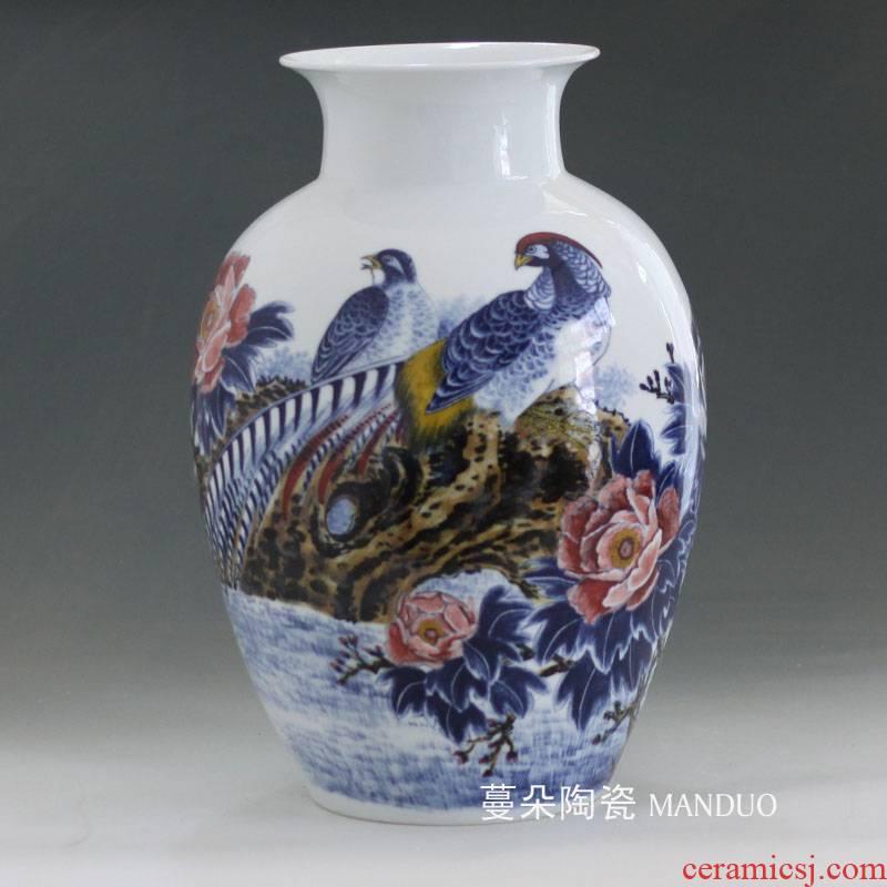 Jingdezhen gift display high - grade porcelain vase rich furnishings the implies a housewarming gift vase appreciation vase