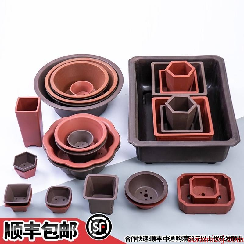 Bonsai POTS of small and medium - sized imitation of violet arenaceous basin rectangle rounded square shallow pot base plastic resin flower pot