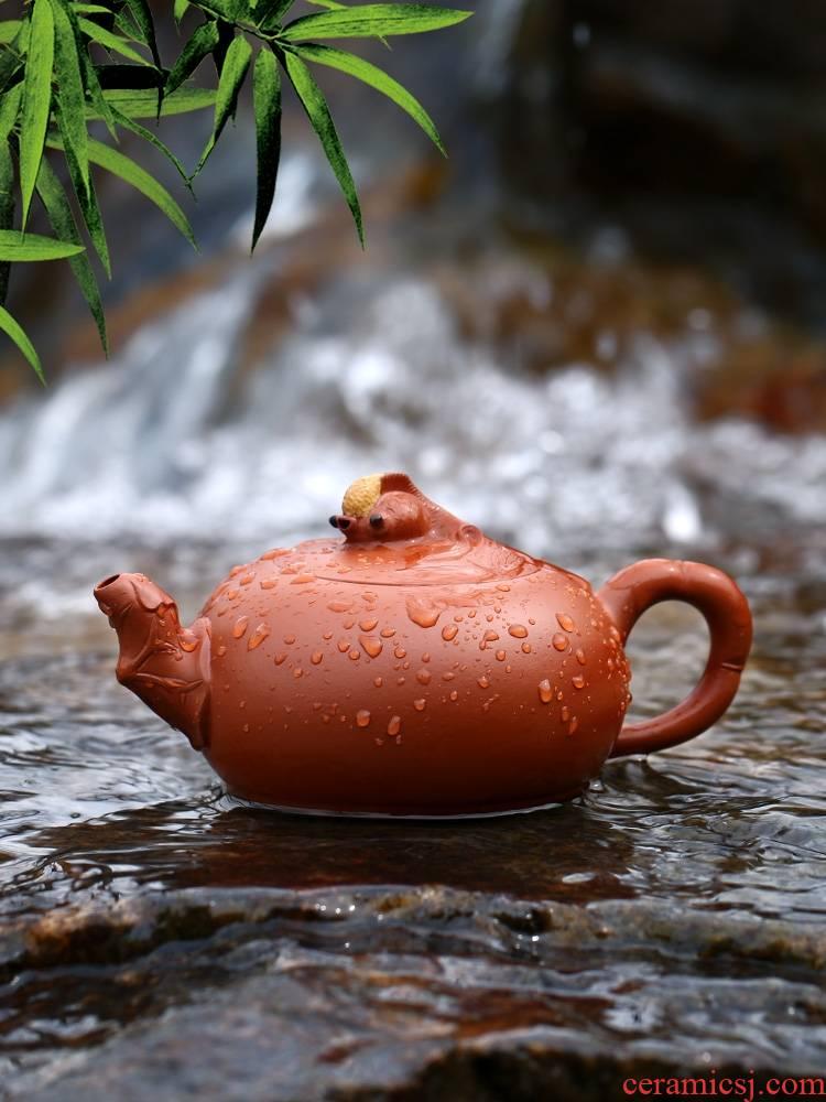 Qiao mu YH yixing it xi shi pot of pure checking famous hidden ore mud sketch kung fu zhu are it
