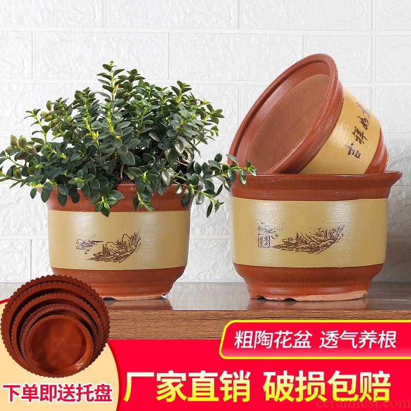 Extra large flower pot purple sand clay ceramic clearance flowerpot high - grade ground potted orchid flowers, green plant