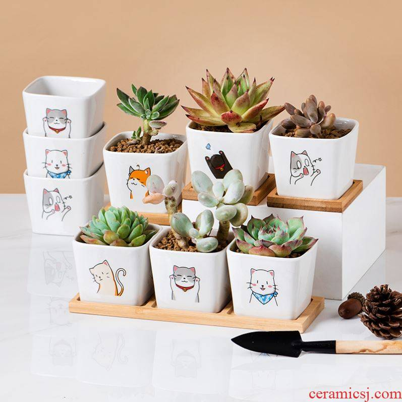 How express cat meat flowerpot square design contracted creative cartoon ceramic flesh POTS with bamboo package mail