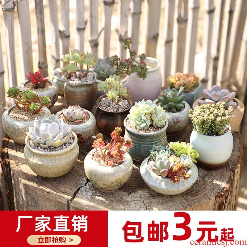Jingdezhen coarse pottery hand - made creative move flower pot in ceramic POTS of meat the plants more lovely bag mail special offer a clearance